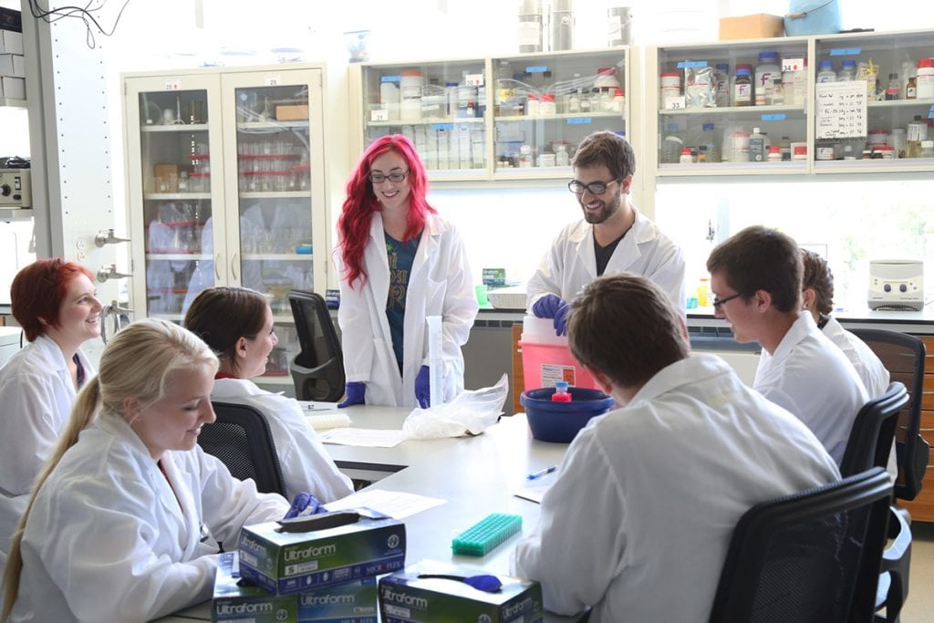 """About 30 Madison undergraduates, graduate students and faculty presented research and activities to the high school students. """"I let the researchers drive their activities,"""" Murphy says. """"I just facilitate them, give them the freedom and time to do it."""""""