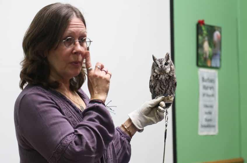 Animal Ambassador, Marsh Haven Nature Center
