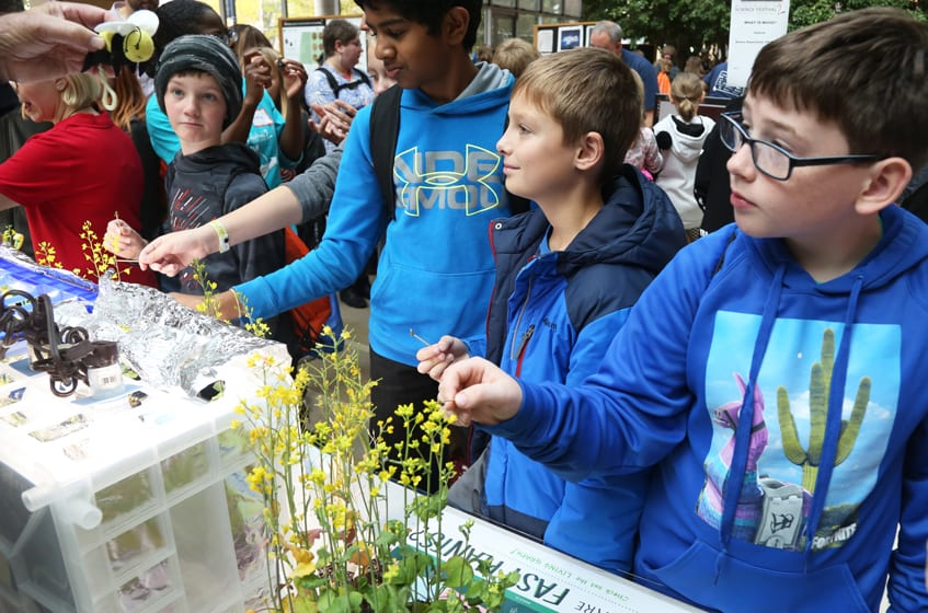 Exploring Pollination, Discovery Building