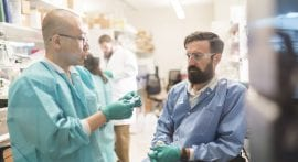 Stem cell advance brings bioengineered arteries closer to reality